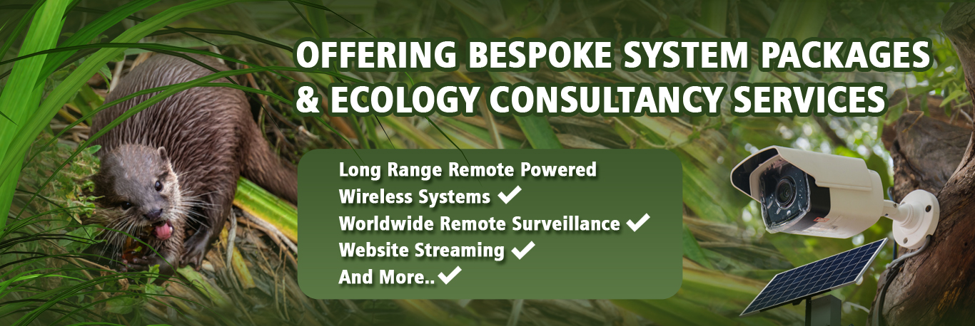 Bespoke Systems & Consultations