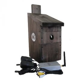 Wireless Bird Box Camera with TV Connection