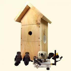 2.4Ghz Wireless Bird Box Camera with TV Connection