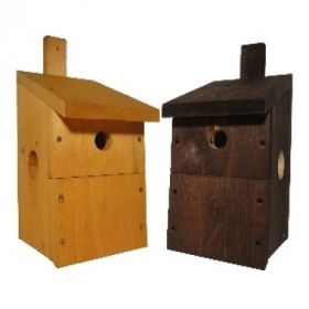 Premium Multi Bird Box Camera Ready