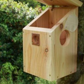 Camera Ready Nest Box FSC Mix SW-COC-005535-O
