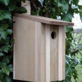 Bird Boxes (Small Birds) - VCNB Eco Bird Box FSC Mix