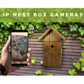 WiFi Bird Box Camera System Complete