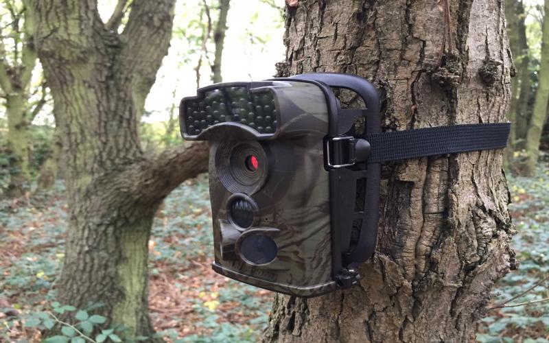 Powering Ltl Acorn Cameras