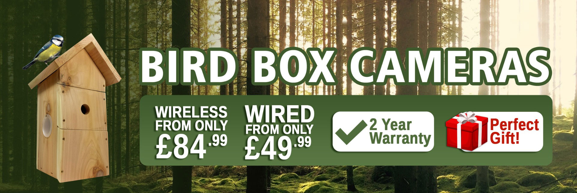 Bird Box Cameras - Wired, Wireless & WiFi, & HD