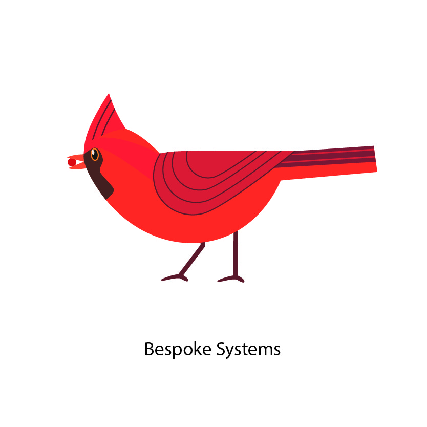 Bespoke Systems