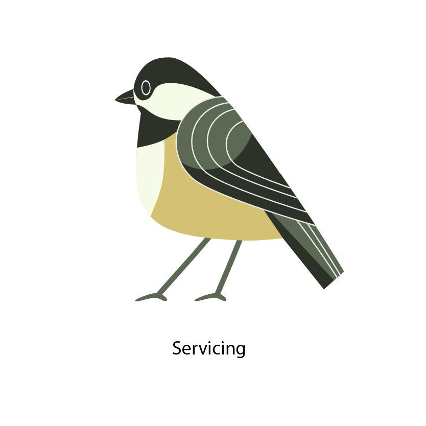 Servicing