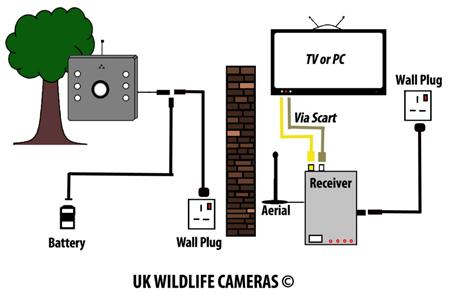 Typical Analogue Wireless Setup